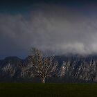 Mt.Roland(2) by Josie Jackson