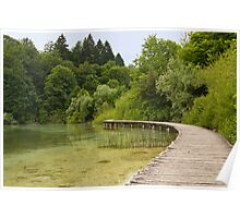 Walkway at the lake. Poster