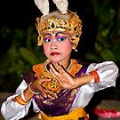 Balinese Rabbit by Chris Westinghouse