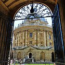 Radcliffe Camera, Bodleian Library by artfulvistas