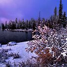 Big Lake Fresh Winters Snow by Charles &amp; Patricia   Harkins ~ Picture Oregon