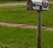 Chicago Cubs Mailbox by Sheryl Gerhard