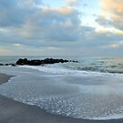 Venice Beach by Kim McClain Gregal