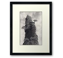 Falconer's Folly Framed Print