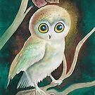 Elf Owl by AngelArtiste