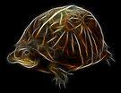 Medicine Wheel Totem Animals by Liane Pinel- Turtle by Liane Pinel