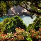 View From The Terrace - The Paleokastritsa Monastery, Corfu, Greece by Lois  Bryan
