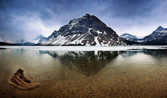 Crowfoot Mountain by Alex Preiss