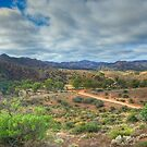 Fantastic Flinders ranges by donnnnnny