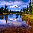 Lost Lake by Charles &amp; Patricia   Harkins ~ Picture Oregon