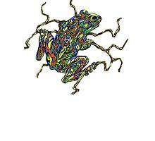 Frog and vine by RickRussell