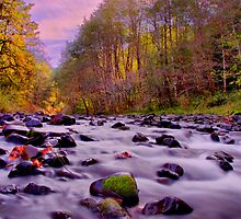 Calapooya Afternoon by Charles & Patricia   Harkins ~ Picture Oregon