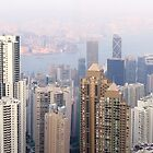 Hong Kong from the Peak by Tracy Friesen