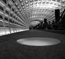 Looking up for the Metro by Chuck Chisler