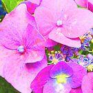 The flowers of Wonderland by elsha