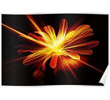 Sparkling Delight Poster