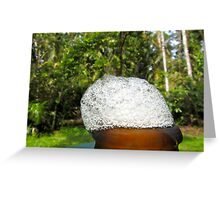 Beer BuBBles in the Rainforest! Greeting Card