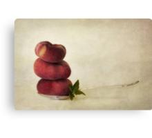 act of balance Canvas Print