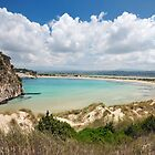 Beaches of Greece - Famous Voidiokoilia Beach  by nickthegreek82