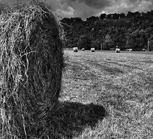Round Bales by Herb Spickard