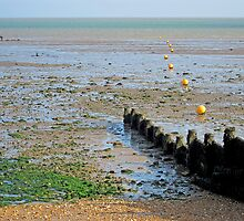 Whitstable,  Kent by buttonpresser