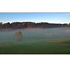 Herbst I by Erwin G. Kotzab
