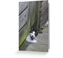 Oops didn't expect that! Greeting Card