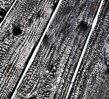 Burnt Wood by Glen Allen