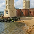 Twin Turrets, Brownsea by RedHillDigital