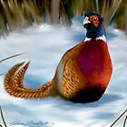 Pheasant by Shawn Swain