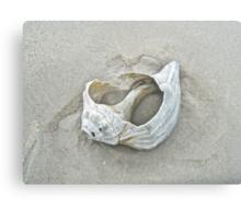 Sculpture by the Atlantic Ocean Canvas Print
