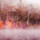 The other side - Lake Daylesford by Hans Kawitzki