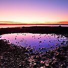 The Purple Puddle - Victoria Point Qld. by Beth  Wode