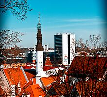 View from Toompea. by tutulele
