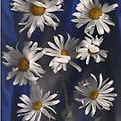 Denim and Daisies Seven by linmarie