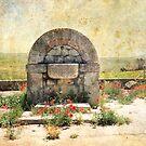 Fontana Antica by Rosy Kueng