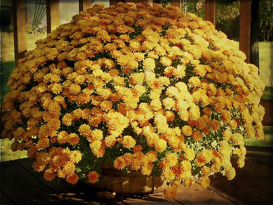 Chrysanthemums in a Basket by Lucinda Walter