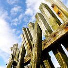 Reach - North Shields Quayside by Jack Taylor