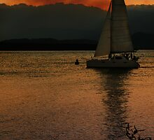 Sailing in Port Douglas by Mark Malinowski