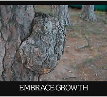 Embrace Growth:  This Tree Knows by Jeremy Jorgensen