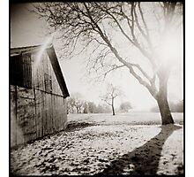{ winter sundown } Photographic Print