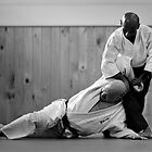 Aikido Yoshinkan by Matt Bottos