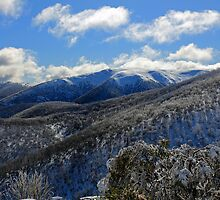 Falls Creek Vista by Cameron B