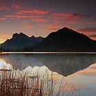 Vermillion Lakes by Cameron B