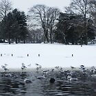 Ducks at frozen lake by Sorted3000