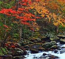 AUTUMN,TREMONT AREA by Chuck Wickham