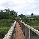 Kauai Bridge by RoySorenson