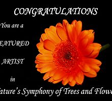 Banner for Natures Symphony of Trees and flowers by AnnDixon