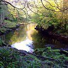 Autumn River by ivanfeltonglenn