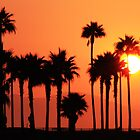 California Sunshine (Huntington Beach, California) by Brendon Perkins